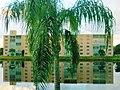 Reflection of the condos on the lake, Meadowbrook Lakes Condominium, Dania Beach, Florida - panoramio.jpg