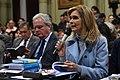 Reunión plenaria de comisiones por IVE 30.jpg