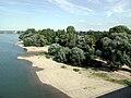 Rheinpark-Köln-Jugendpark.JPG