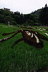 Rice Paddy Field Art in Yonezawa 2015 (19421842532).jpg