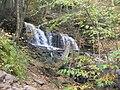 Ricketts Glen State Park Mohawk Falls 1.jpg