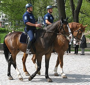 Police of Finland - Finnish mounted police.