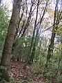 Rijswijk - 2008 - panoramio - StevenL (18).jpg