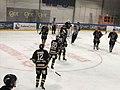Ringerike Panthers 04.jpg