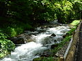 Rio Toran Canejan amont (1).jpg