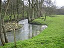 River Dorn in Steeple Barton - geograph.org.uk - 361243.jpg