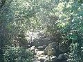 Rivière U Furcone à Conchiglio (1).jpg