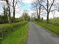 Road at Kilnacross (geograph 2915572).jpg