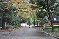 Road separating Ueno Park Zoo from Tokyo Metropolitan Art Museum 01 (15567014488).jpg