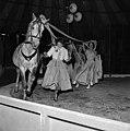 Robert Bros Circus at Welshpool (6985276960).jpg