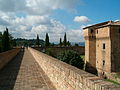 Rocca Malatestiana Cesena 2006 10.jpg