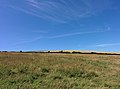 Rock-cornwall-england-tobefree-20150715-152543.jpg