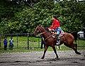 Rodeo in Panama 05.jpg