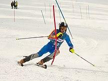 Andorra-Sport-Fil:Roger Vidosa FIS-Slalom Hinterstoder 2010