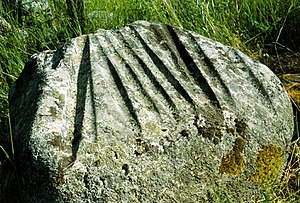 Grooves (archaeology) -  Grooves, the one at left at the edge of another one, Gotland, Sweden.