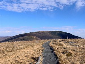 Roan Mountain (Roan Highlands) - The Appalachian Trail crossing Round Bald with Jane Bald and Grassy Ridge Bald in the distance