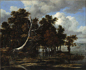 Oaks at a lake with Water Lilies
