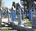 Rumunia, Sapanta, Wesoły Cmentarz DSCF7054.jpg