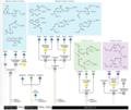 SPM schematic.png