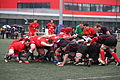 ST vs LOU espoirs 2013 (64).JPG