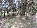 Salakas, Lithuania - panoramio (181).jpg
