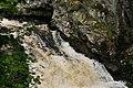 Salmon Leap at the Falls of Shin - geograph.org.uk - 547373.jpg