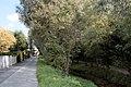 Salzburg - Langwied - Bachwinkelweg - 2020 09 21.jpg