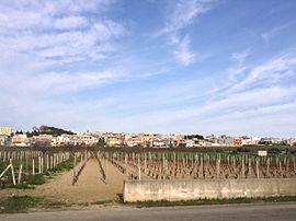 View from San Marzano di San Giuseppe