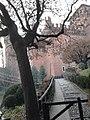San Salvario, Torino, Italy - panoramio (76).jpg
