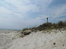 Myrtle Beach Is Protected From Erosion By Vegetation Filled Sand Dunes