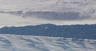 Moreton Island - Large sand cliff showing sand rivers running