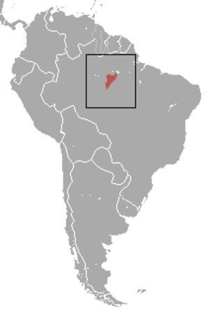 Santarem marmoset - Image: Santarem Marmoset area