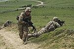Sarmis '15, 2-2 Combined Arms Live Fire Exercise 150603-A-EM105-523.jpg