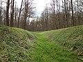 Scheidgraben, Oberwald (2).jpg