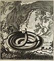 Scheuchzer(1723)-vol2-p378a-catheaded-serpent.jpg