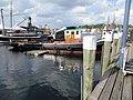 Schlepper Jonny, (Flensburg 29 Juli 2015), Bild 01.jpg