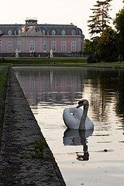 Schloss Benrath 03.jpg