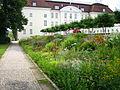 Schlosspark Köpenick - Blumenbeet.jpg