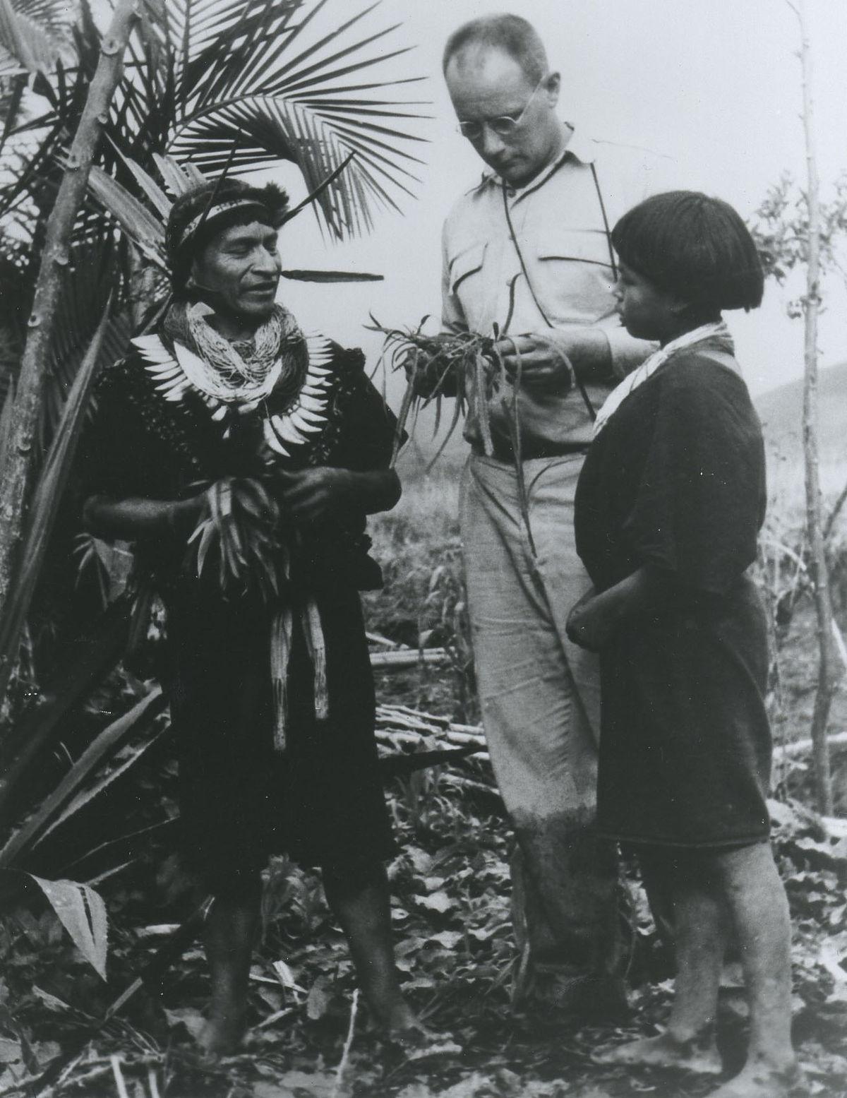 Ethnobotany - Wikipedia