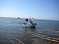 Scicli (Sicilia) 2010 065.jpg