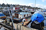 Seattle - Canal Marina 07.jpg