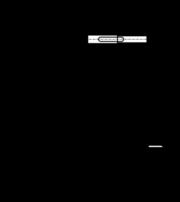 Segment De Piston Car Simulation