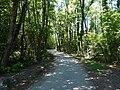 Sentier des Roselières @ Lake Annecy @ Saint-Jorioz (50472419301).jpg