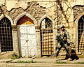 SgtSoloIraq.jpg