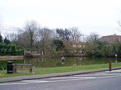 Sherfield on Loddon Duck Pond.JPG