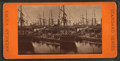 Shipping, Charleston, S.C, from Robert N. Dennis collection of stereoscopic views 2.png