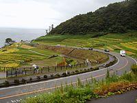 Shirayone Senmaida 4.jpg