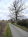 Shirrall Drive - geograph.org.uk - 1754582.jpg