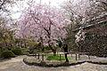 Shojiji Kyoto Japan09s3s4592.jpg