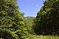Sima-kő - panoramio.jpg